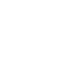 Dansk Trav og Galop Union